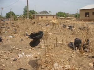 Bénin février-mars 2013 234