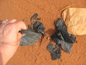 Des sacs plastiques incrustés dans les sols.