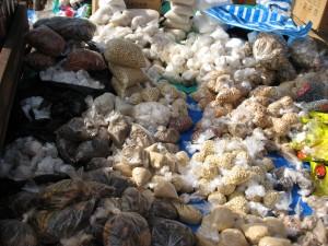 Sur les marchés, le plastique emballe tout !