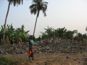 Une décharge sauvage à Porto-Novo