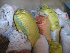 quelques-uns des sacs de riz de la récolte