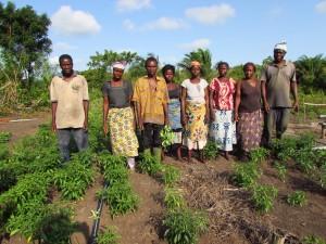 le groupement Mahussi de Gbéhoué Ouatchi: 8 familles nombreuses qui vivent grâce au maraîchage